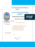 Informe Nº10 Superficies Inertes