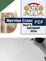 Nervios-Craneales.pdf