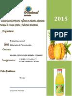 301727779-Nectar-de-Pina.docx