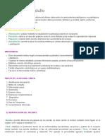 Historia Clinica Odontologica Adulto