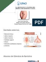 Embriología, Histología y Anatomía Del