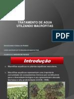 Apresentação macrofitas