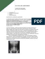72619712-Radiologia-de-abdomen.pdf