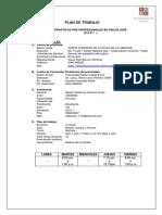 PLAN-OPERATIVO-2019-IMPRIMIRr.docx