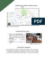 DIAGNÓSTICO AMBIENTAL.docx