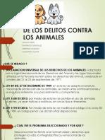 De Los Delitos Contra Los Animales