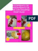 ABLANDAMIENTO DE CARNE.docx
