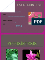 diapositivasdelafotosintesis-140513202853-phpapp01