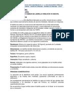MURO_CABEZA_DE_LADRILLO_KING-KON_18_HUEC.docx