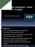 Presentation Snh