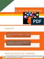 Psicopatologia de Memoria