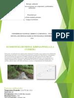 Paso 3 - Identificar Ecosistemas y Sus Componentes