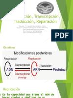 Copia de Biologia Molecular Genetica Expo