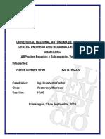 Informe_vectores