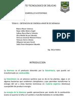 TEMA 6 Obtencion de Eneria Apartir de Biomasa