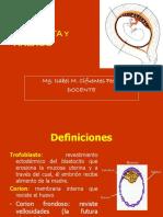 Sem 4 Placenta