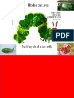 The-Very-Hungry-Caterpillar-Lifecycle-reveal.pptx