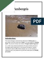 Ambergris (1)