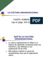 1 2 Cultura Organizacional Robbins Varios