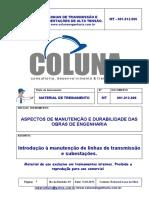 Linhas de Transmissão e SEs - Introdução à manutenção.pdf