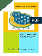 P6 manual.pdf