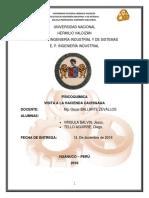 Informe-cachigaga-2018