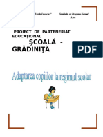 Model Raport Finalizare Scoala Altfel