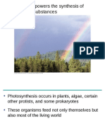 Photosynthesis.pdf