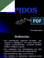 LIPIDOSpresen[2]