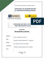 02 Informe Final - Desempeño Laboral (1)