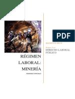 Regimen Especial Mineria