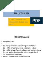 Struktur Sel Prokariot