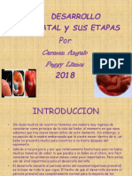 Diapositivas Etapas Del Desarrollo Prenatal (1) (1)
