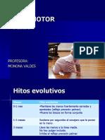 AREA MOTORA-FINA.ppt