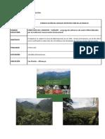 PROYECTOS DE CONSERVACIÓN.docx