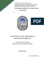 Guia de M.A. (1).doc