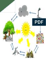 FLUJO DE ENERGIA DE MI COMUNIDAD.docx