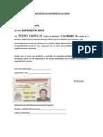 DECLARACION INICIAL DE SEGURIDAD DE LA CARGA pedro carrillo.docx
