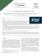 Multiresponse Modelling of Caramelisation Reaction