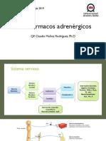 Adrenérgicos.pdf