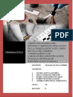 TRABAJO CRIMINALISTICA TERMINADO.docx