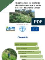 Resiliencia Al Cambio Climatico Proyecto
