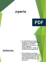 Puerperio e Infeccion Puerperal