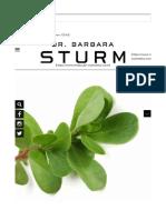 barbara sturm.pdf