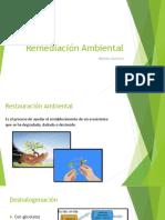 Presentacion Micro