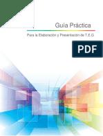 Guia Practica T.E.G Ultima 0.2