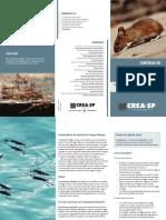 Folder Pragas Web