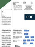 version 1 de analisis de tapones Elastomericos
