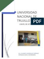 Informe General de Rol de La Enfermera y Nivel I