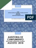AUDITORIA FINANCIERA FINALITO